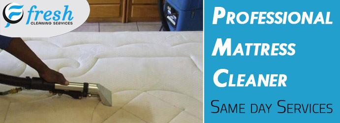 Mattress Cleaning and Stain Removal