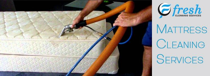 Professional Mattress Cleaning Services Perth