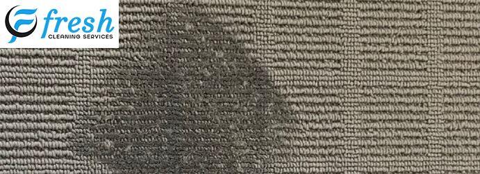 Carpet Burn Repair Service Sydney