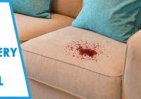 Upholstery Stain Removal