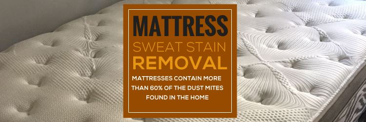 Mattress Cleaning Mount White