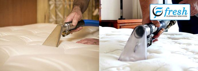 Professional Mattress Cleaning
