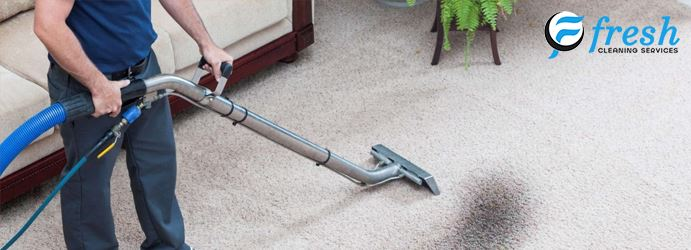 Carpet Mould Removal Sylvania Waters