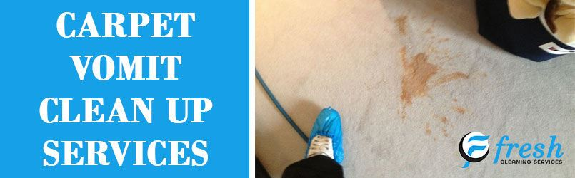 Remove Vomit From Carpet
