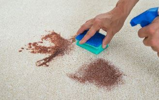 Carpet Stain Removal Sydney
