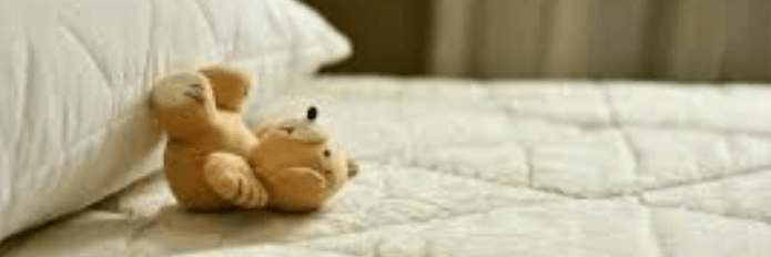 Mattress Dust Mites Removal-Wollongong