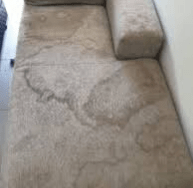 Couch Stain Removal Canberra