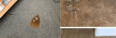 Repair Burn Damage On Carpet