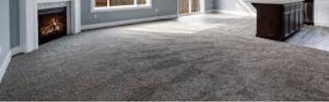Mould Damage Carpet Repair