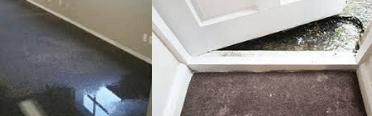 Water Damage Carpet Repair