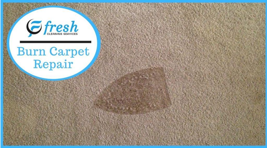 Burnt Carpet Repair